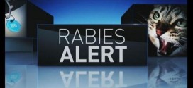 UPDATED- Fourth Rabies Case In White County Reported