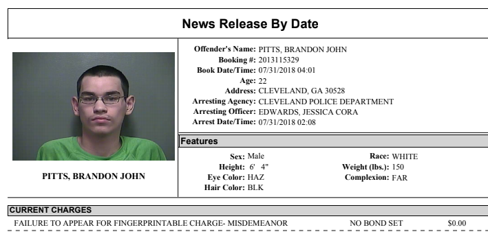 White County Detention Center Report 7-31-18 – WRWH