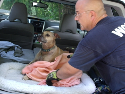 Dog Rescued After Falling From Dukes Creek Overlook