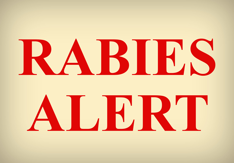 Number 14 Rabies Case In White County