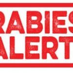 12th Rabies Case Reported In White County