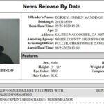 White County Detention Center Report Ending September 29th