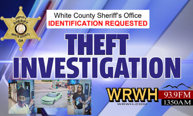 WCSO Wanted: Theft Suspects Identification